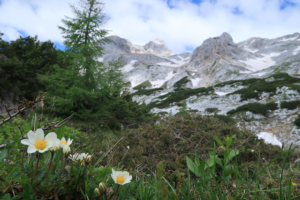 Triglav-climb-guided-tour-3